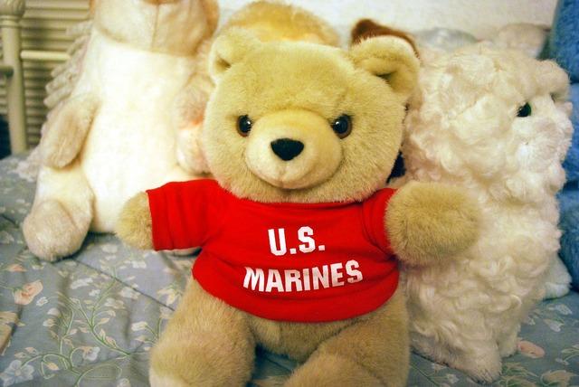 Bear marine toy, animals.