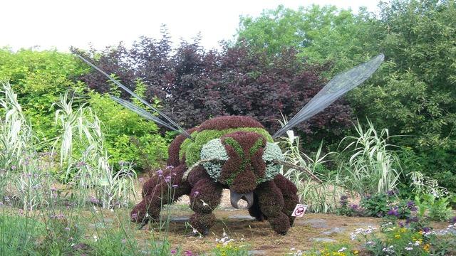 Bee garden plant, nature landscapes.