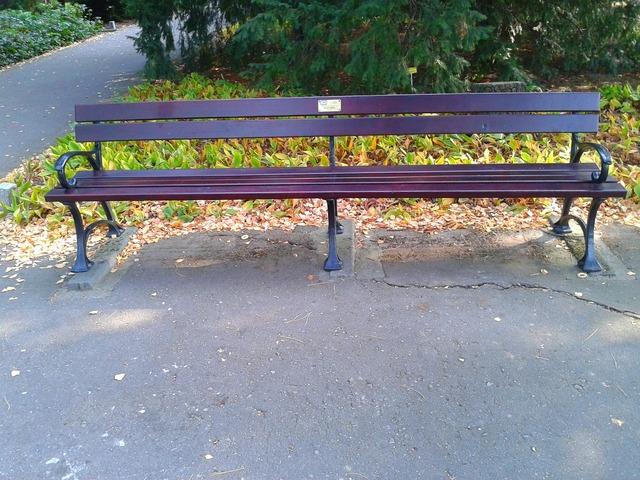Bench park garden.