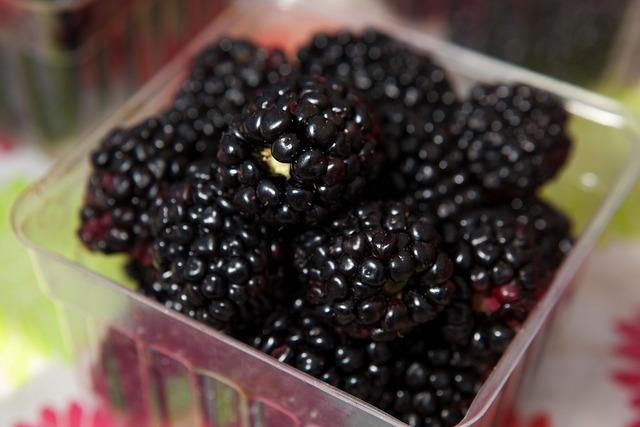 Berries blackberries healthy.
