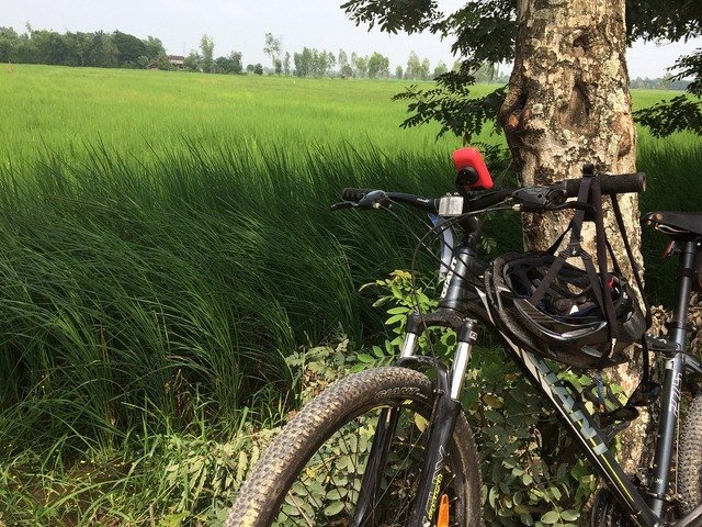 Bicycle touring bike, travel vacation.