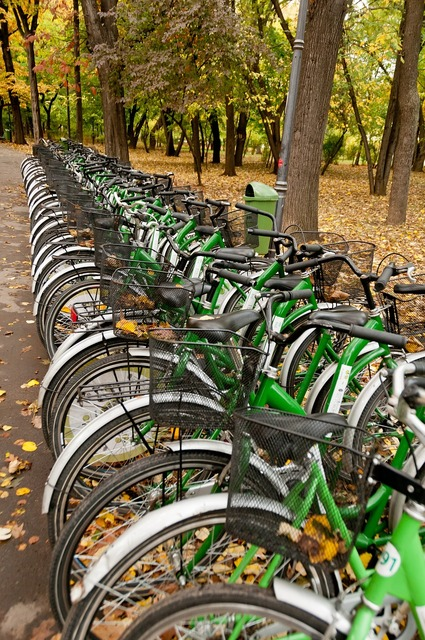 Bicycles rental cycling, sports.