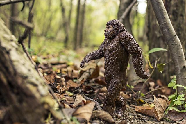 Bigfoot evolution anthropoid ape, nature landscapes.