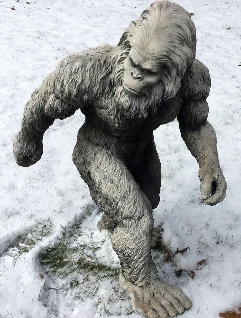 Bigfoot sasquatch yeti.