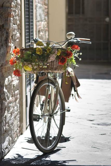 Bike romantic summer.