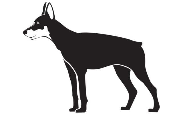 Black dog illustration, animals.