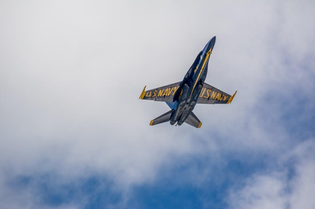 Blue angels f-18 hornet.