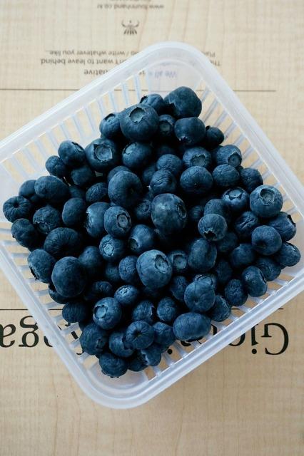 Blueberry fruit purple, food drink.