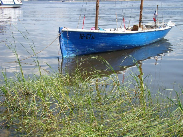 Boat beach grass, travel vacation.