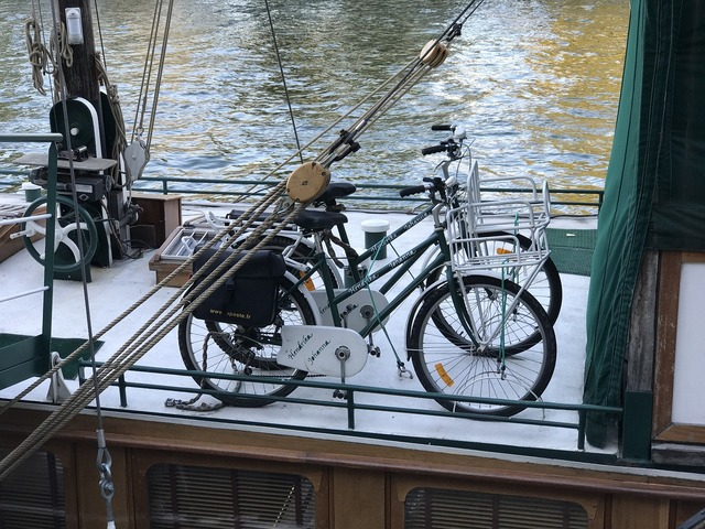 Boat sena paris.
