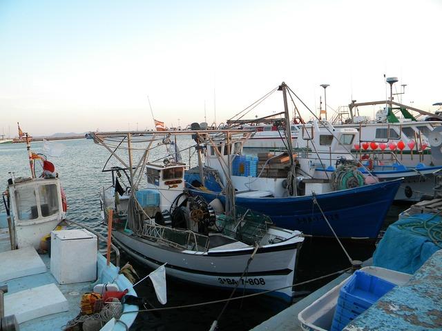 Boats fishing girona.