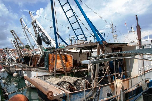 Boats sea fishing vessels.