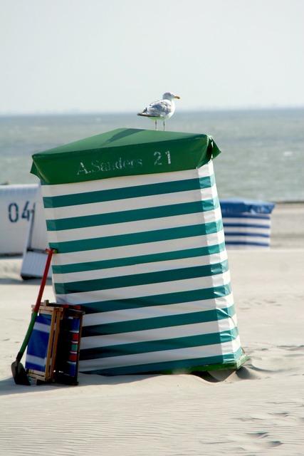 Borkum beach tent seagull.