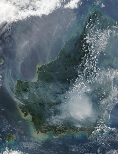 Borneo forest fire satellite image.
