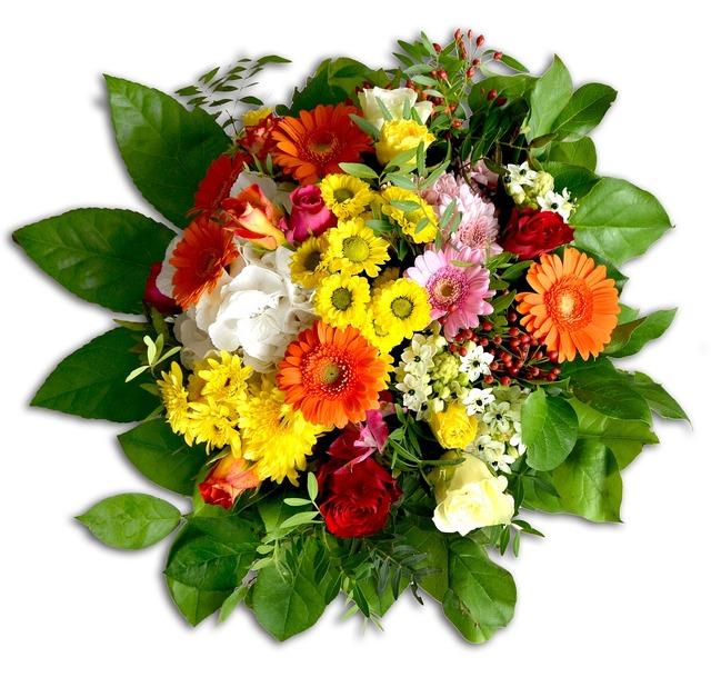Bouquet bound colorful, nature landscapes.