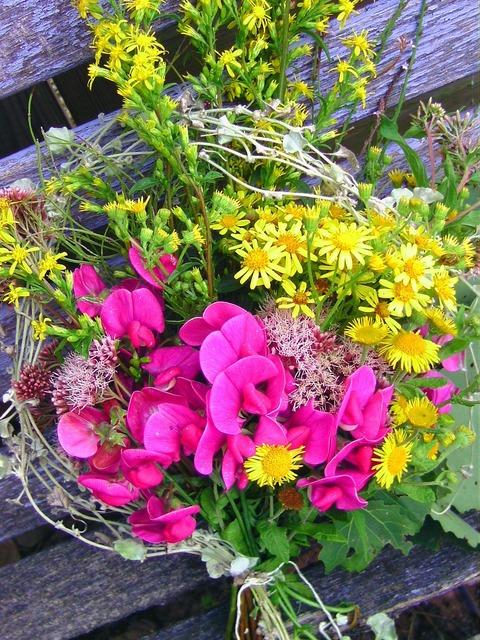 Bouquet flowers decoration, nature landscapes.