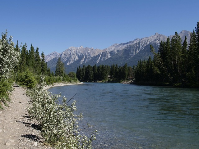 Bow river canmore alberta, nature landscapes.