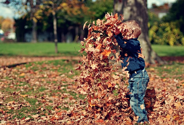 Boy playing leaves, people.