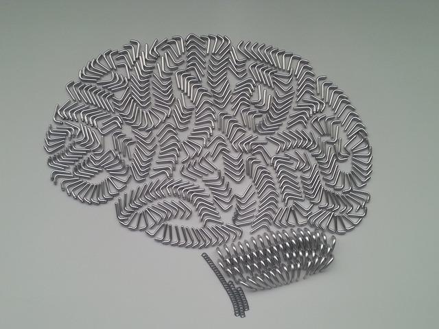Brain brand door handles.