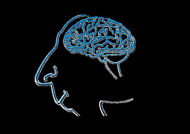 Brain face silhouette, computer communication.