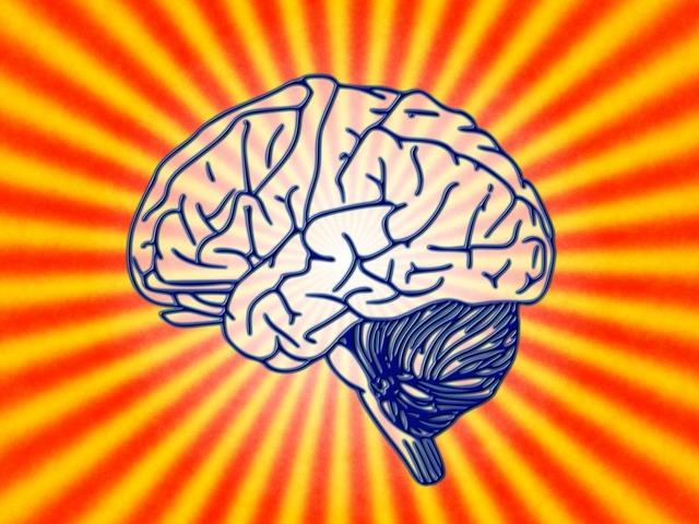 Brain science biology, science technology.
