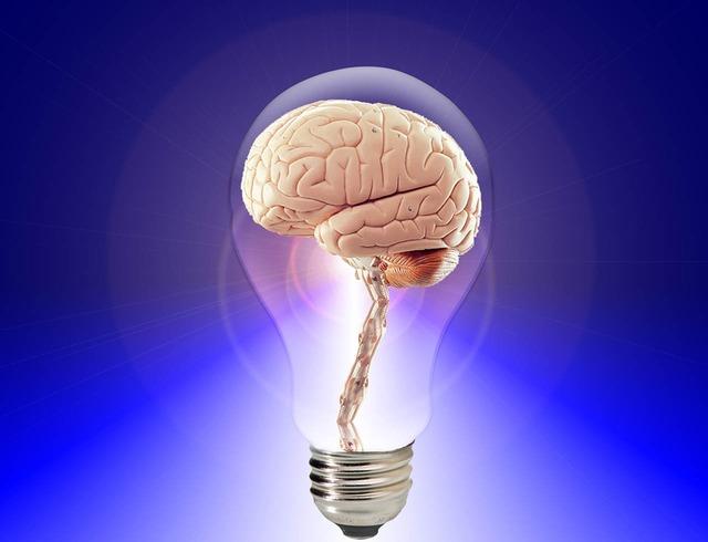 Brain think human, science technology.