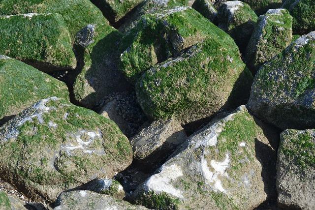Breakwater texture pierre, backgrounds textures.