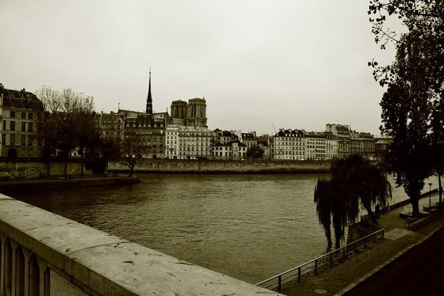 Bridge paris seine, architecture buildings.