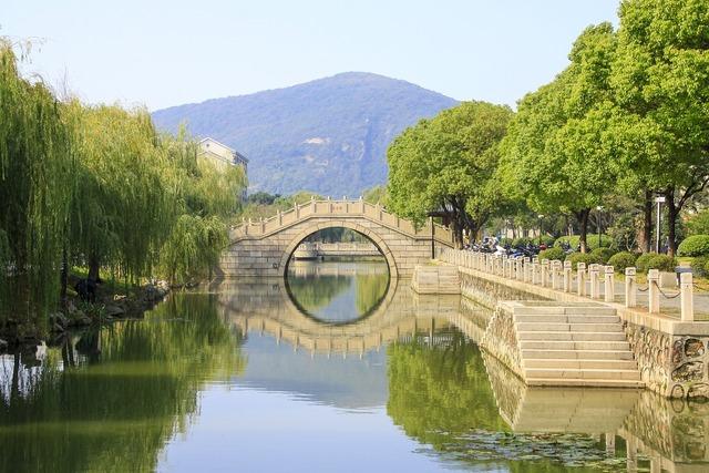 Bridge running water trees.