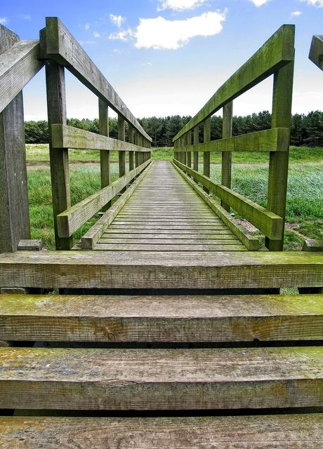 Bridge wooden wood, nature landscapes.