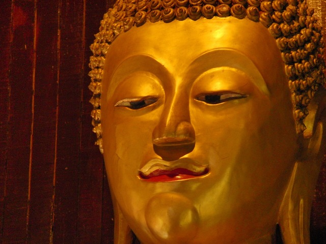 Buddha budda thailand, religion.