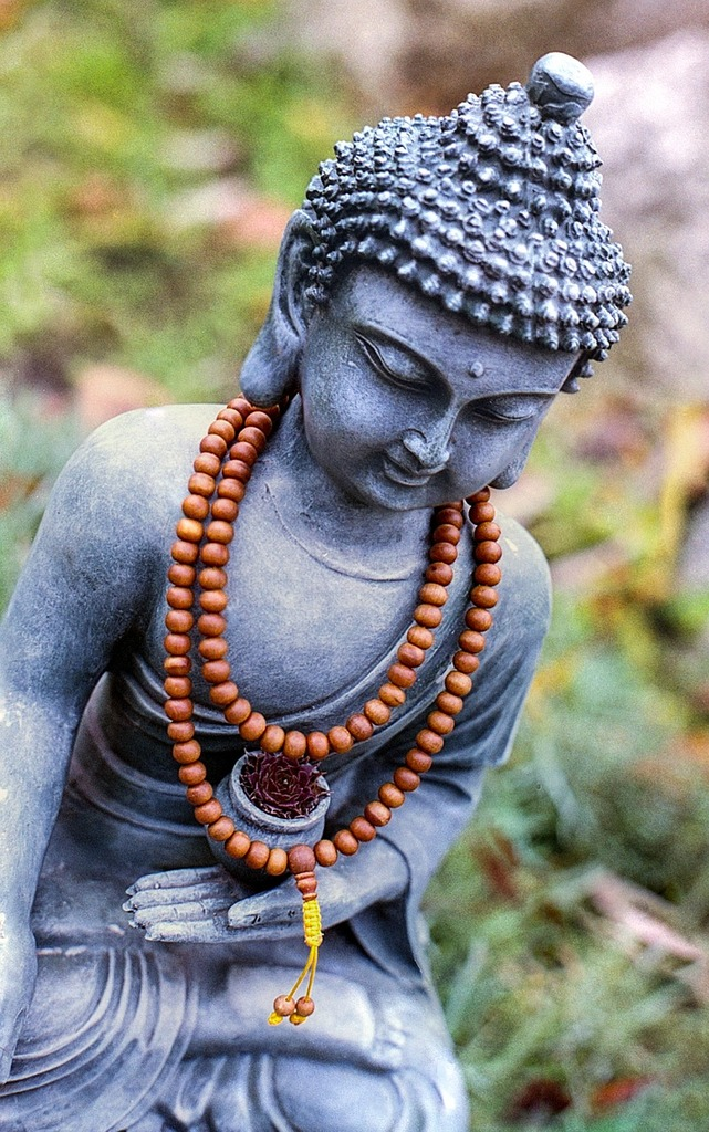 Buddha meditation statue, religion.