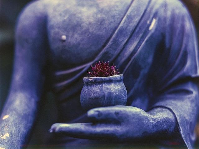 Buddha plant religion, religion.