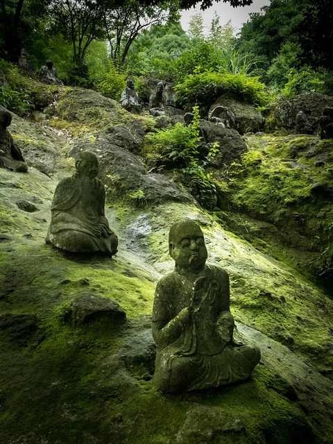 Buddha statue buddha japan, religion.