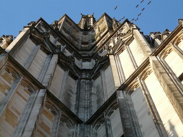 Building church birds, architecture buildings.