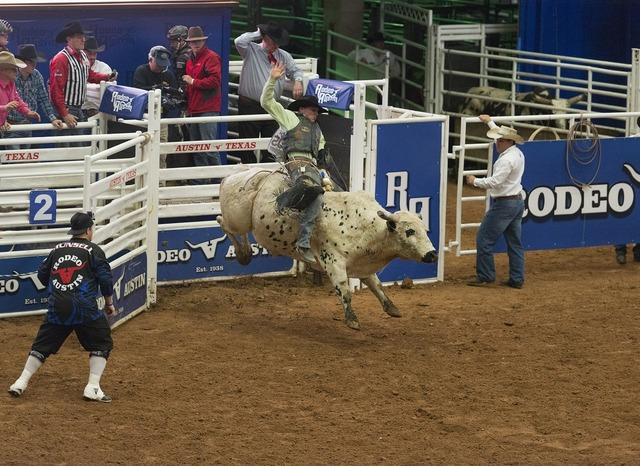 Bull riding cowboy rider, sports.