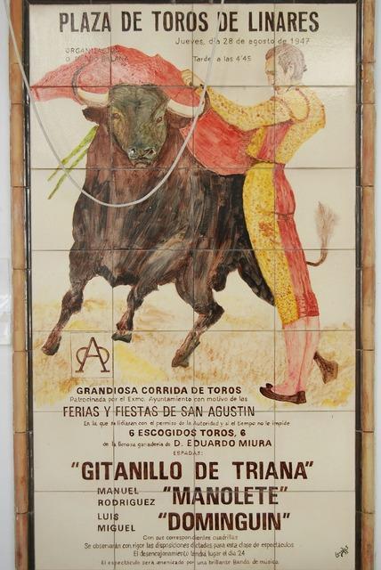 Bull torero spain.