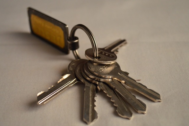 Bunch of keys keys key fob.