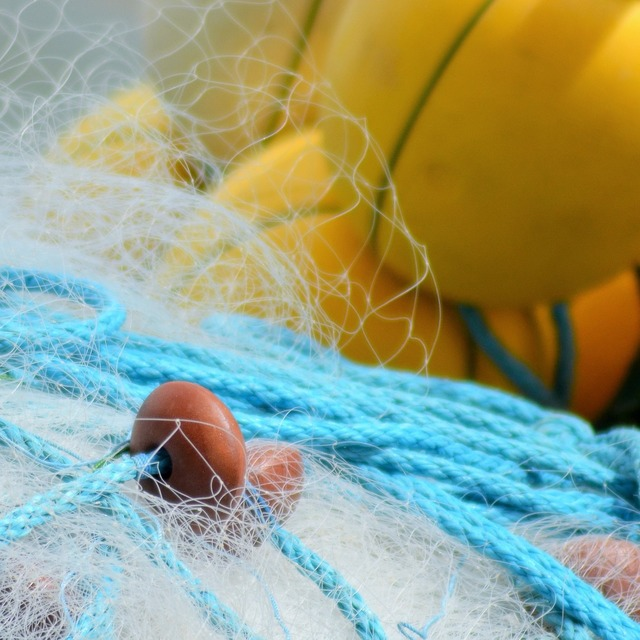 Buoy float net.