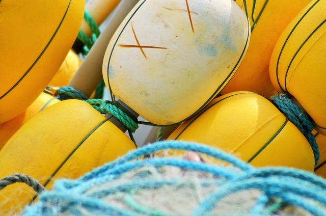 Buoy float net.