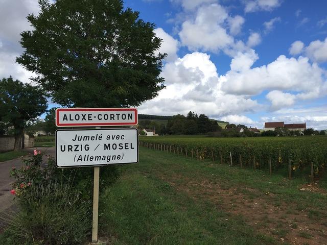 Burgundy wine corton.