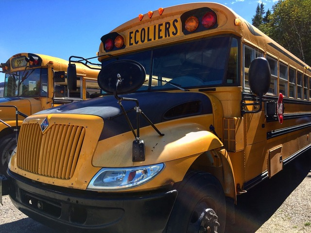 Bus canada school, education.