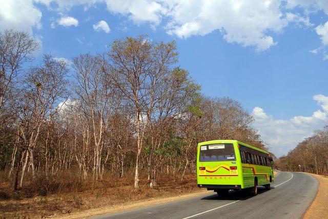 Bus public transport street, transportation traffic.