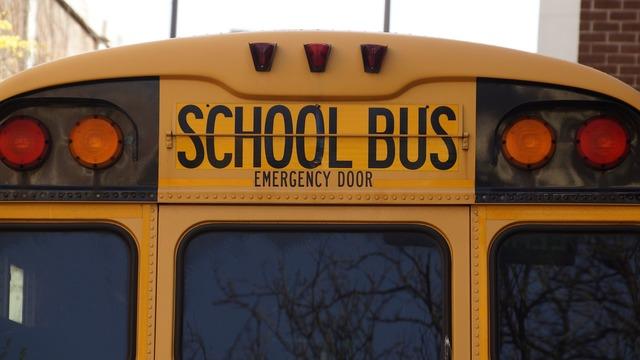 Bus school school bus, education.