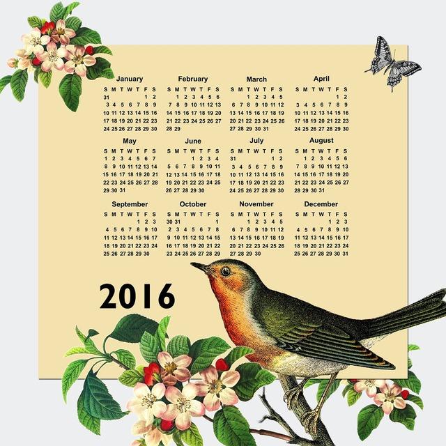 Calendar 2016 2016 calendar, animals.