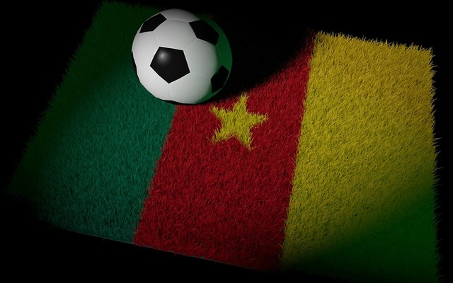 Cameroon football world cup, sports.