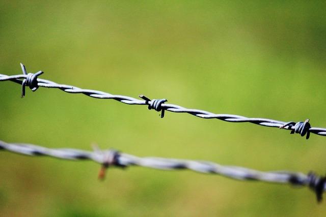 Captivity prison barbed wire.
