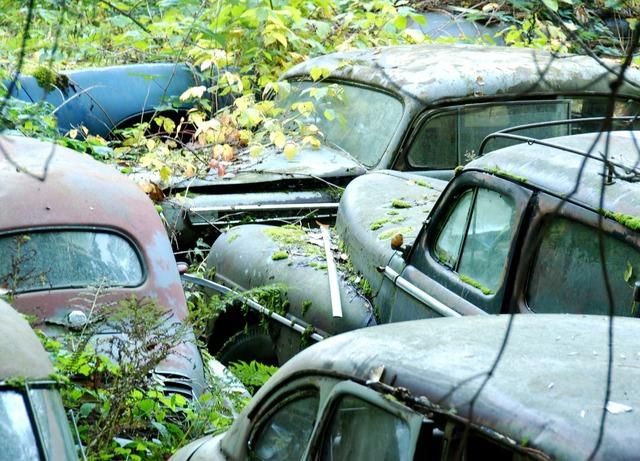 Car cemetery old cars neglected.