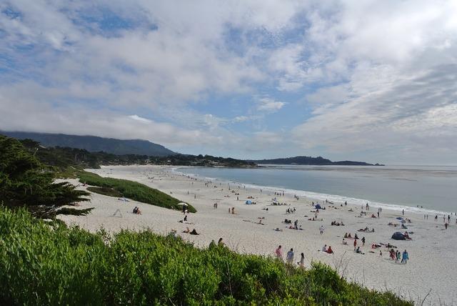 Carmel california beach, travel vacation.