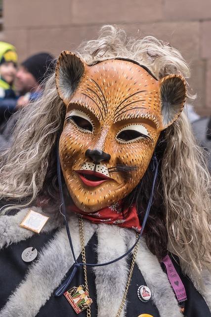 Carnival fasnet colorful, animals.